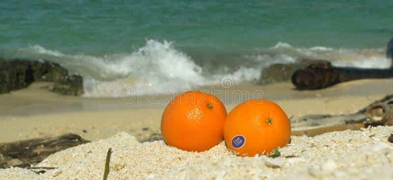 море sulu se померанцев коралла пляжа Азии панорамное стоковые изображения rf