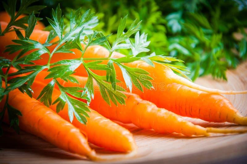 Моркови на плите стоковые изображения rf