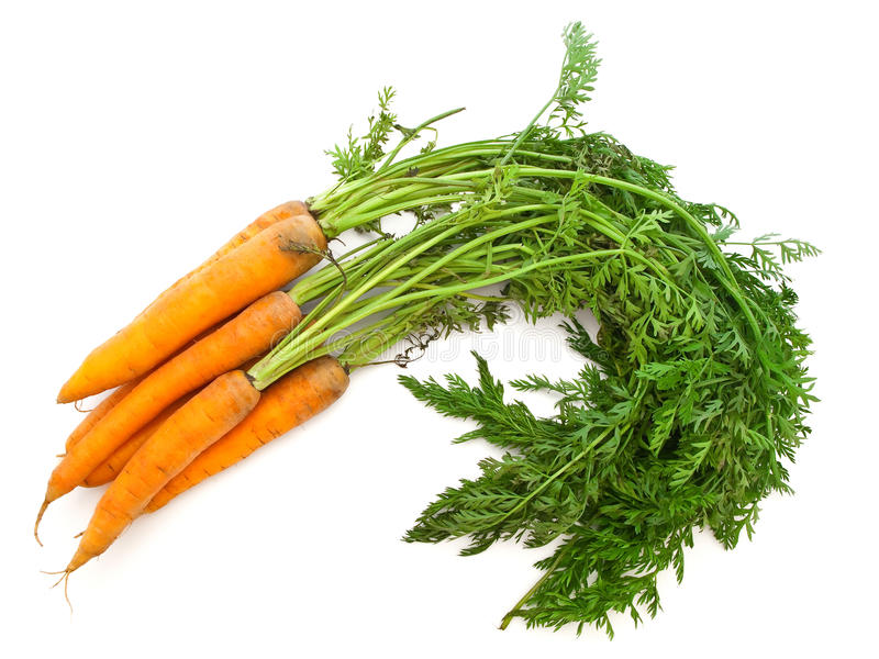 моркови стоковые изображения