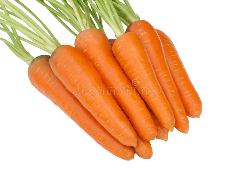 Морковь изолированная на белой предпосылке стоковое изображение rf