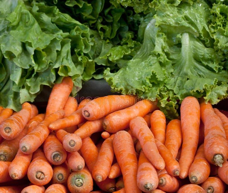 Морковь и салат стоковые изображения