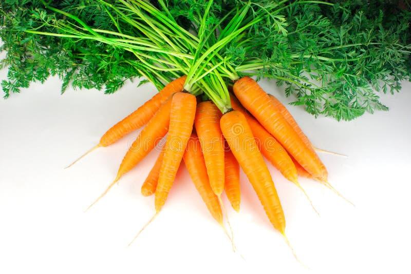 морковь пука стоковое фото
