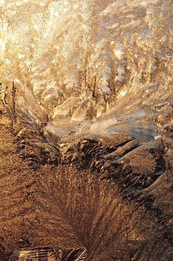 Морозная картина на стекле, загоренном солнцем утра Иллюзия лист осени стоковые фото