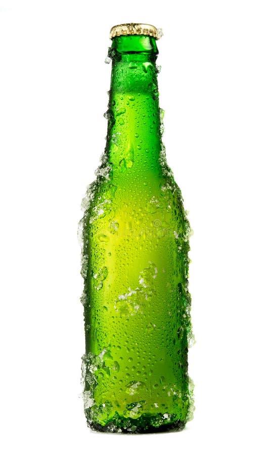 Морозная пивная бутылка стоковые фото