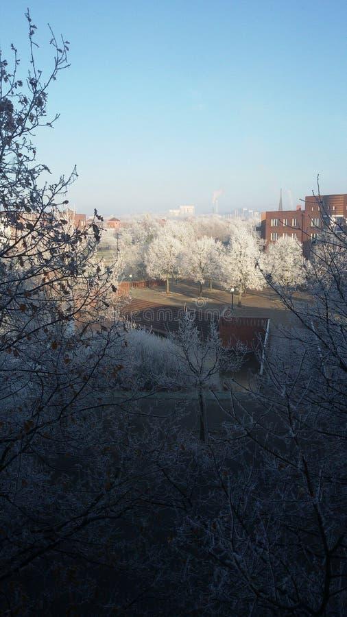 Морозное зимы стоковое изображение