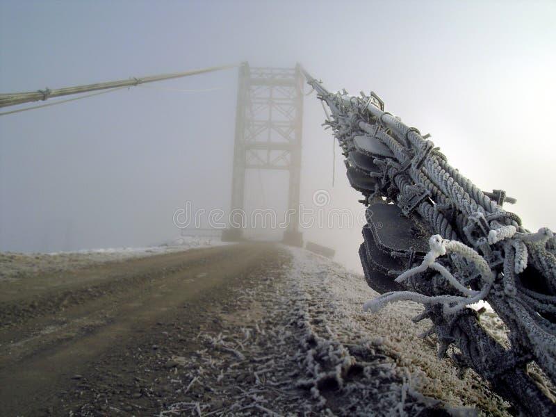 морозное утро стоковое изображение rf