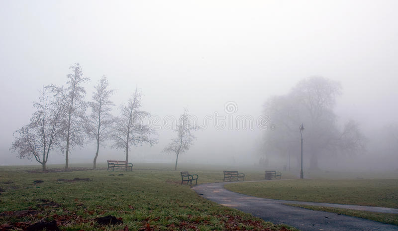Морозный и туманный парк Diss простой стоковое изображение rf