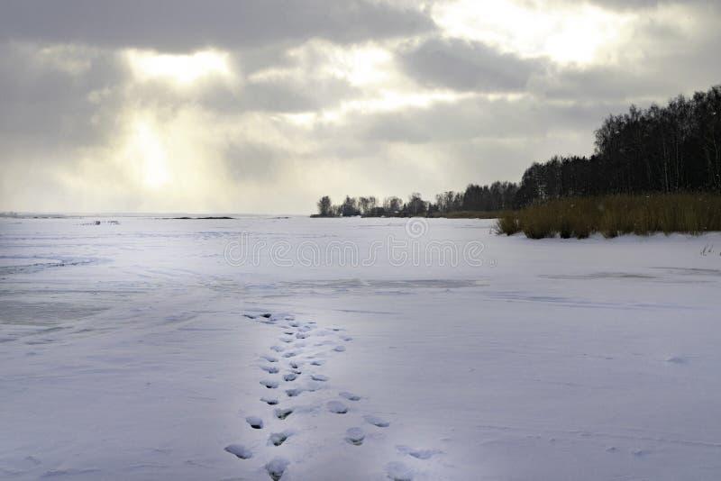 Морозный ландшафт зимы с замороженным рекой Сумерк Холодное утро покрытые валы снежка Восход солнца След ноги Река стоковые изображения rf