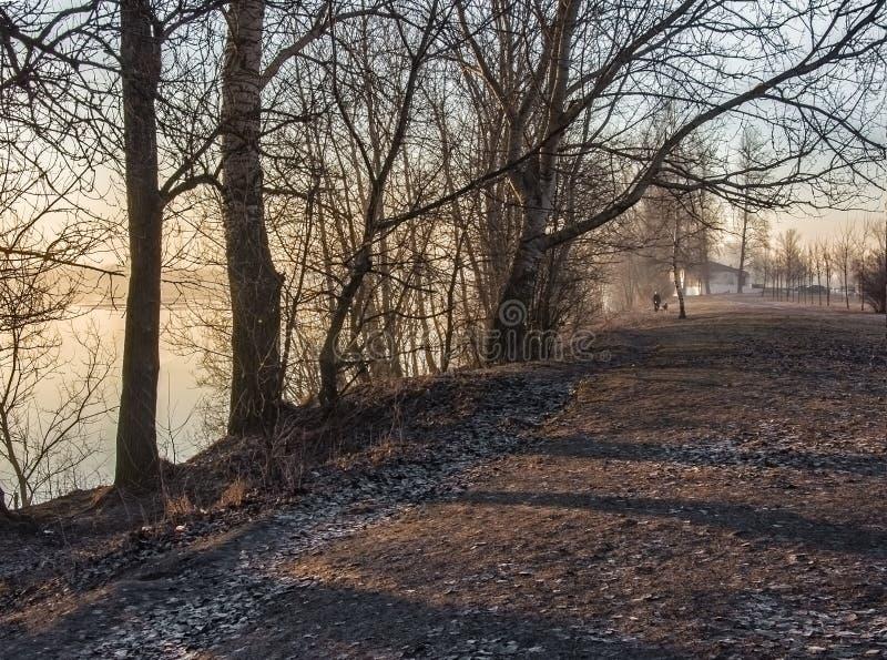 Морозный рассвет в марте на банках реки Neva стоковые изображения rf