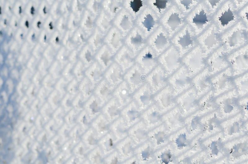 Мороз на сетке зимой стоковое изображение