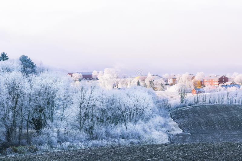 Мороз со стороны страны стоковое фото rf
