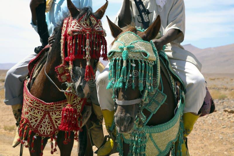 Морокканские всадники стоковые фотографии rf