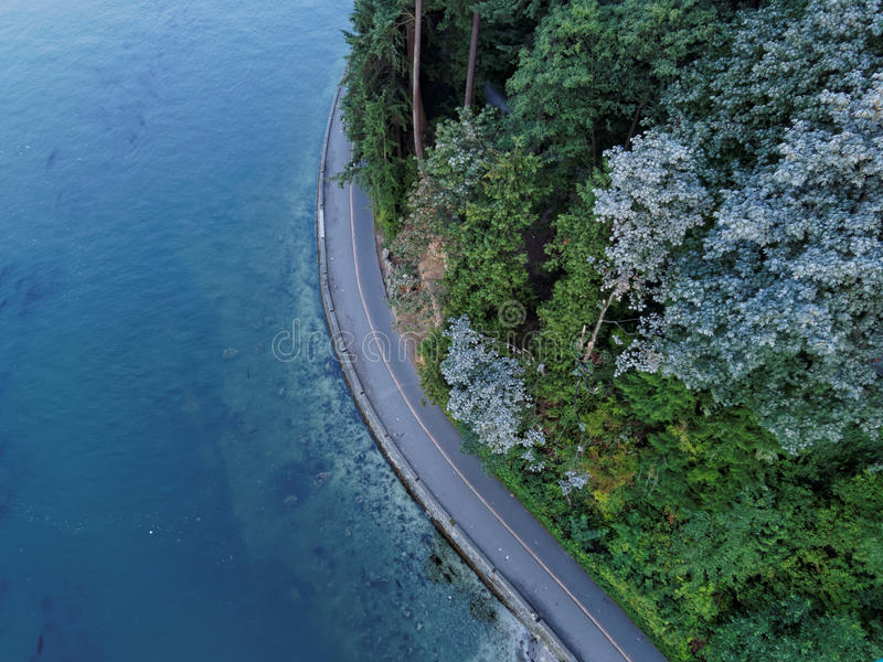 Морская дамба парка Стэнли с голубым океаном, Ванкувером стоковая фотография