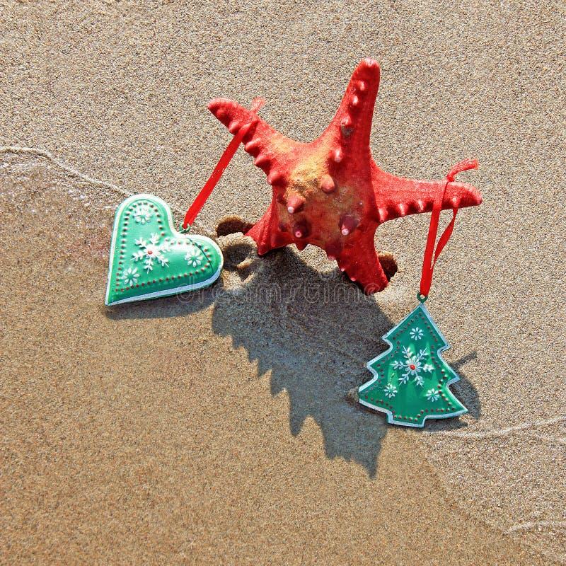 Морская звёзда украшенная с рождеством забавляется с тенью как рождественская елка на пляже стоковая фотография rf