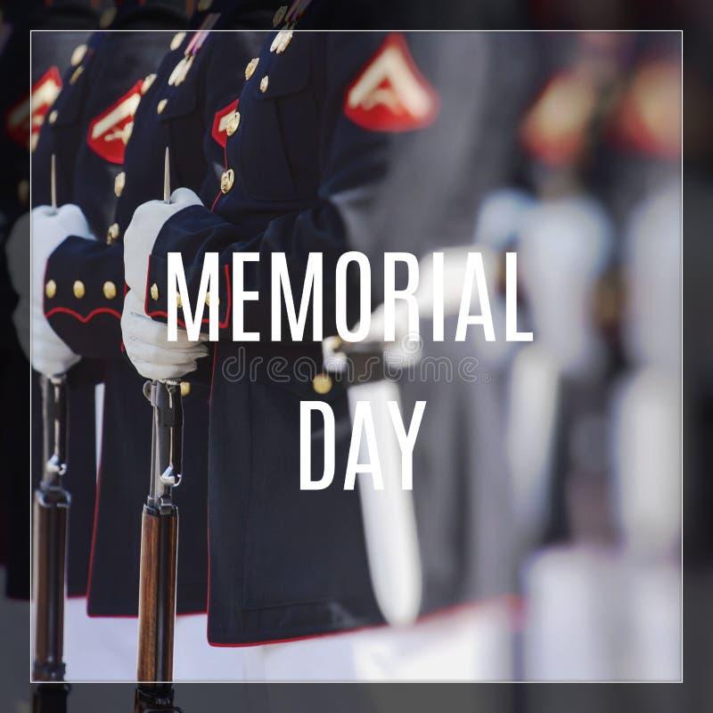 Морская пехот Соединенных Штатов Счастливый день ветеранов стоковое фото