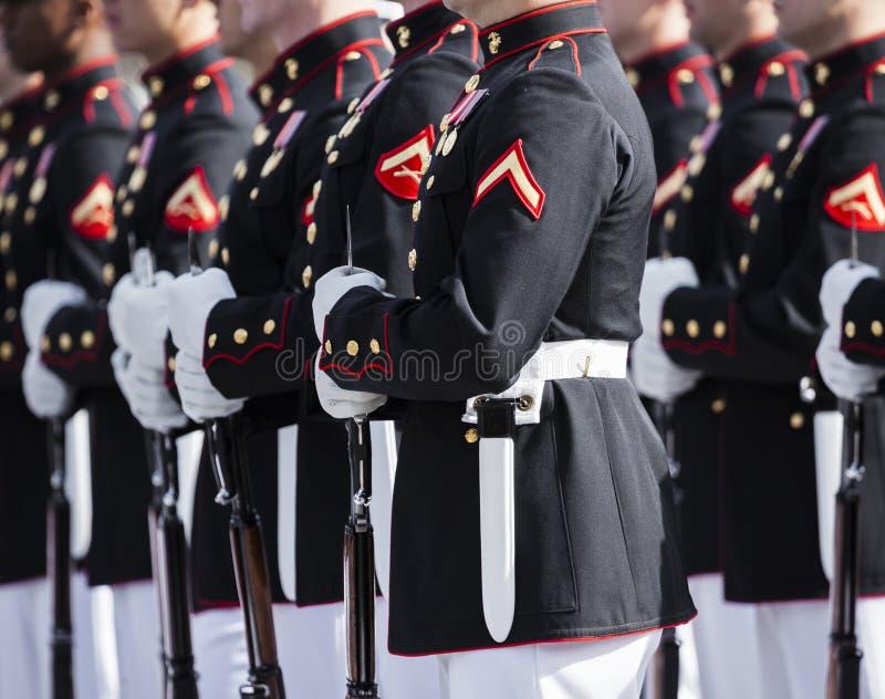 Морская пехот Соединенных Штатов стоковое фото rf