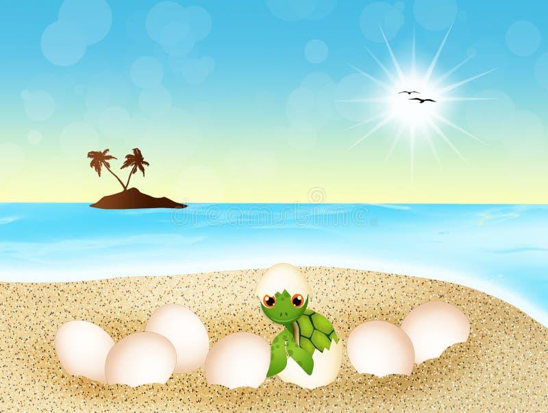 Морская черепаха кладет яичка на пляж иллюстрация штока