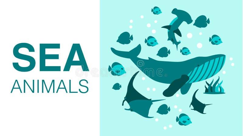 Морские животные рекламируя плоский дизайн знамени мультфильма бесплатная иллюстрация