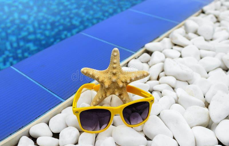Морские звёзды и солнечные очки бассейном Конец-вверх стоковые изображения