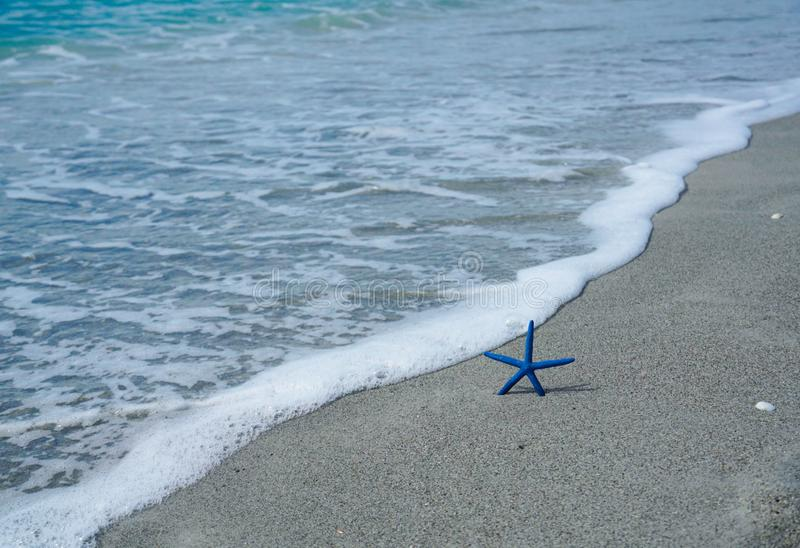 Морские звёзды на пляже близко к океану стоковое изображение