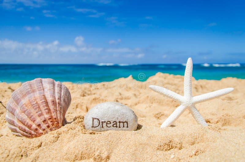 Морские звёзды с seashell и знаком стоковое фото rf