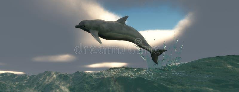 Морское млекопитающее стоковое изображение rf