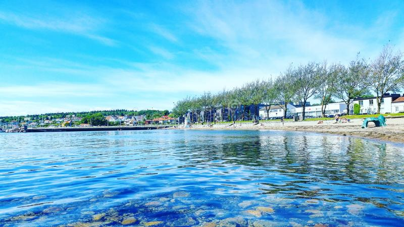 Морское побережье в мхе Норвегии стоковое фото