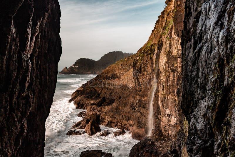Морской лев побережья Орегона выдалбливает скалы моря и маяк головы Hec стоковые фотографии rf