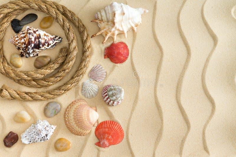 Морской натюрморт с раковинами, камнями и веревочкой стоковые фото