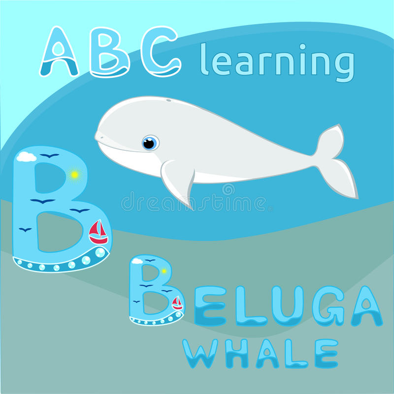 Моря вектора белого кита шаржа иллюстрации вектора кита белуги младенца ABC k письма b алфавита шаржа морского животного вектора  иллюстрация вектора