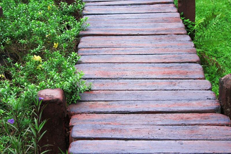 Мостовая камня блока в деревянной текстуре картин и зеленый орнаментальный завод с цветком зацветая в саде стоковое изображение rf