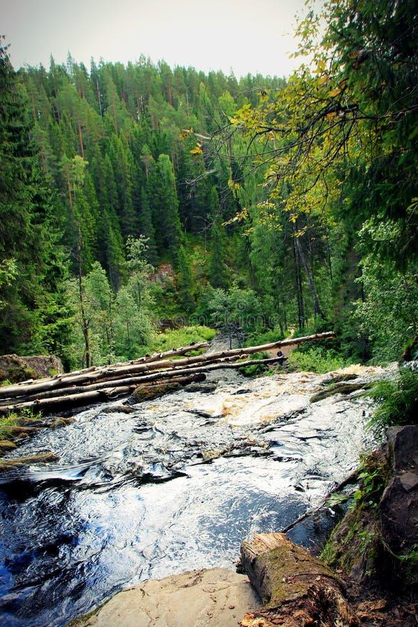 Мосты белизны водопада Karelia, Россия стоковое фото