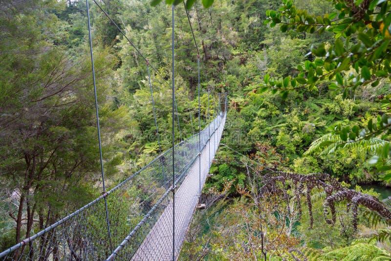 Мост веревочки в джунглях национального парка Abel Tasman в новом Ze стоковая фотография rf