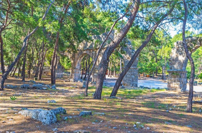 Мост-водовод через деревья, Phaselis, Турция стоковая фотография rf