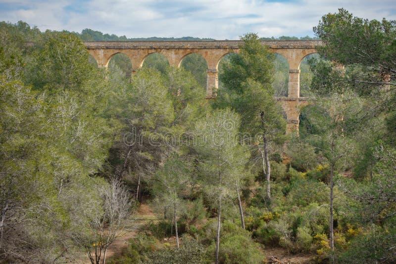 Мост-водовод Ferreres в лесе стоковые изображения