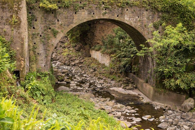 Мост в ботаническом саде стоковое фото rf