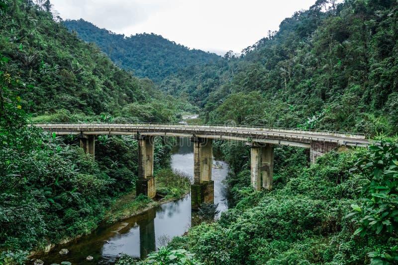 Мост в джунглях Провинция Quan Binh, Вьетнам стоковая фотография