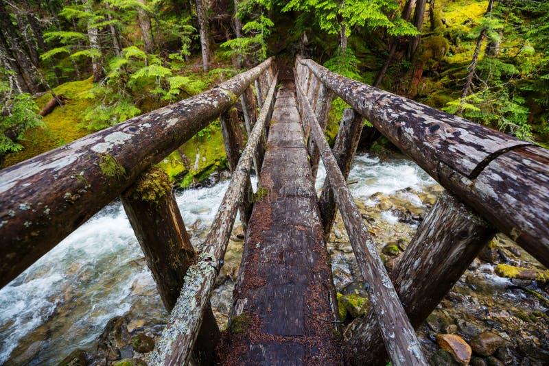 Мост в лесном Вуден-мосту через ручей гор стоковые фото