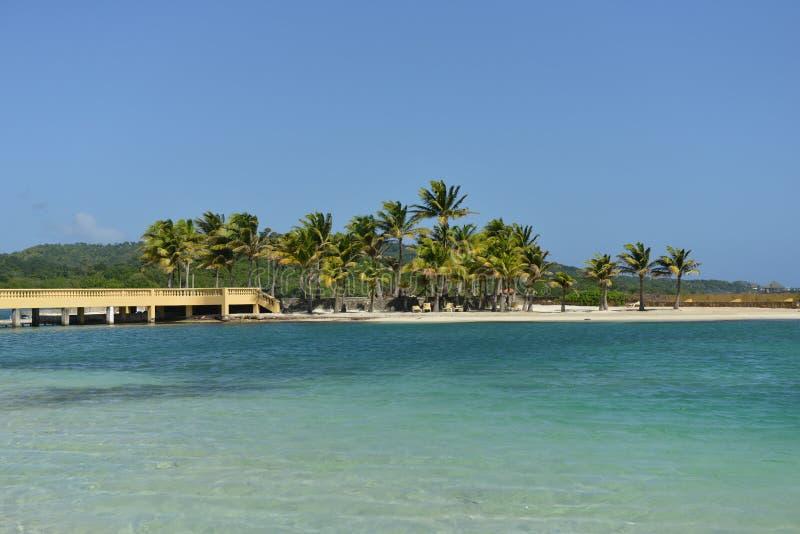 Мост вдоль карибского океана, Roatan, Гондурас стоковые изображения rf