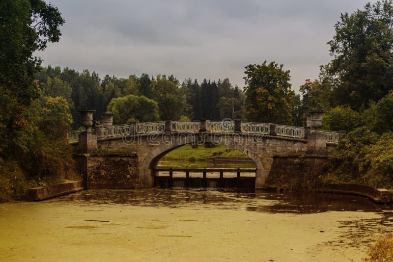 Мост в парке стоковые фотографии rf