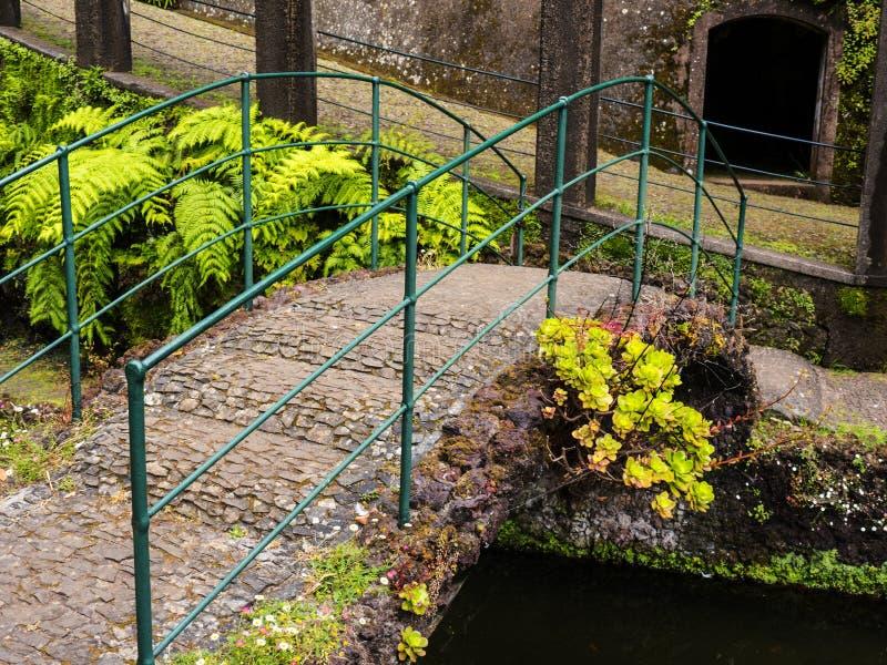 Мост в тропическом саде на Monte над Фуншалом Мадейрой стоковая фотография rf