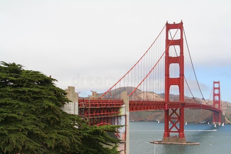 Download Мост золотого строба на лете в Сан-Франциско Стоковое Изображение - изображение насчитывающей brice, известно: 41653237