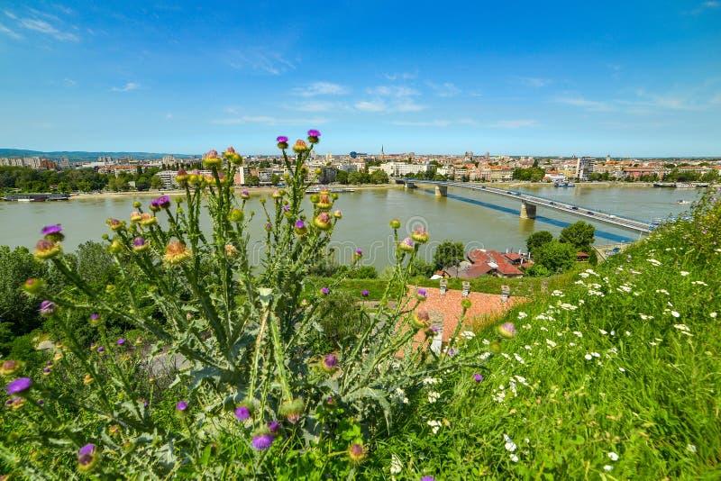 Мост и Дунай радуги от крепости в Novi грустном, Сербии стоковые фотографии rf