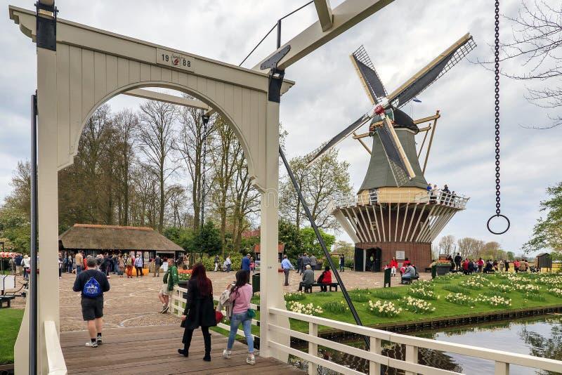 Мост и мельница Keukenhof стоковые фото