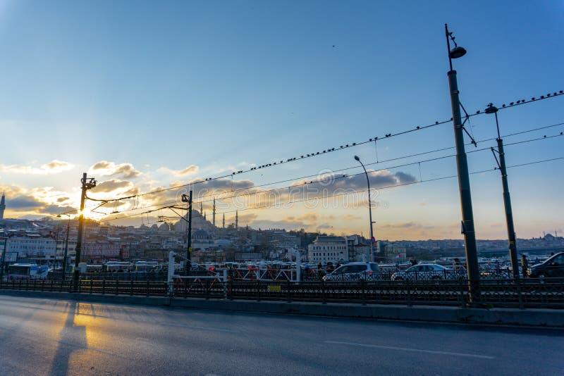 Мост и птицы Galata на проводах, взгляде ночи мечети моста Galata голубой в Стамбуле, Турции, 12 01 2019 стоковые фотографии rf