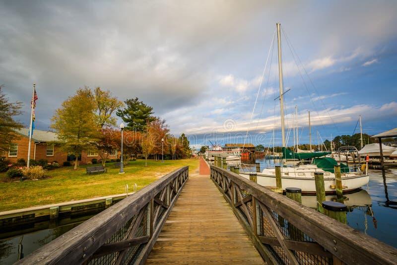 Мост и шлюпки состыковали в гавани, в St Michaels, Мэриленд стоковые изображения rf