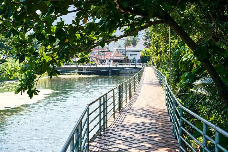 Мост кирпича пешеходный на реке в тропическом острове стоковое изображение