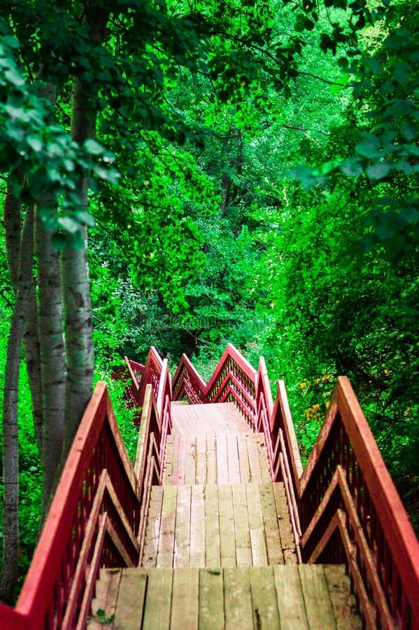 Мост к нигде стоковое фото
