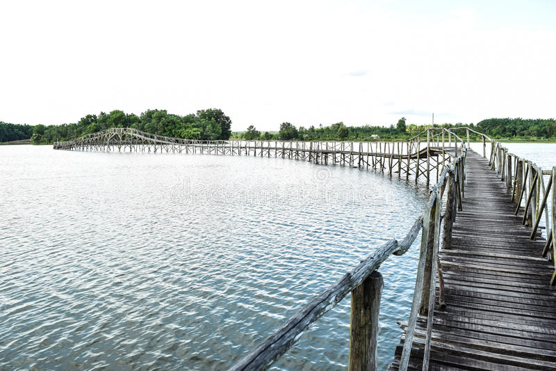 Мост к одичалому стоковое изображение rf