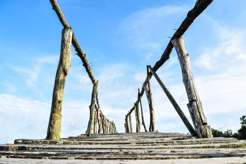 Мост к одичалому стоковое изображение